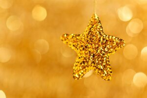 This is a gold star to honor someone by gifts to Elder Wisdom Circle